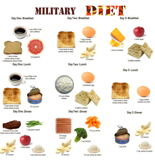 Military Diet | My Silly Life